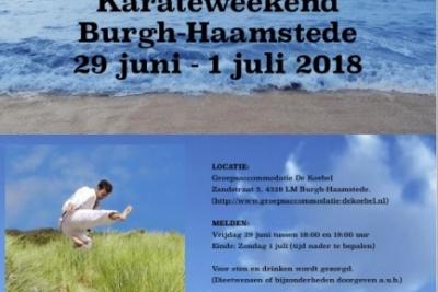KarateGoes: Kamp Haamstede